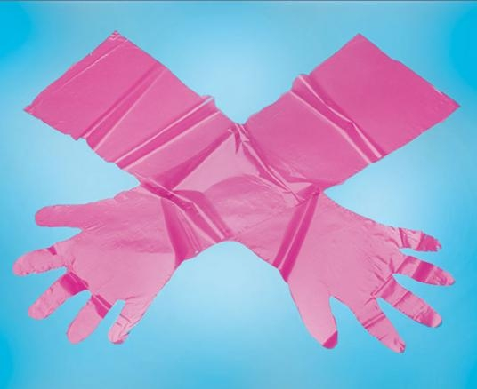 B6-1100-rasberry-glove-resized